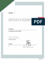 Java Certificate Anesu Mushate