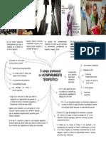 El campo profesional del acompañamiento terapéutico.pdf