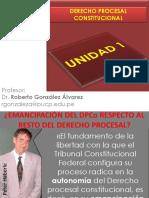 Dpco Particularidades Del Proceso Constitucional