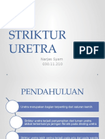 ppt STRIKTUR URETRA