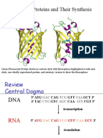 Chapter 9 Proteins and Their Synthesis