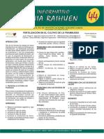 Fertilizacion en el cultivo de frambuesa.pdf