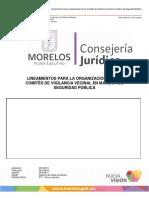 LINEAMIENTOS PARA LA ORGANIZACIÓN DE LOS COMITÉS DE VIGILANCIA VECINAL EN MATERIA DE SEGURIDAD PÚBLICA