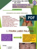 patologia-congenita-de-cabeza-y-cuello..pptx