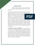 informe david.docx