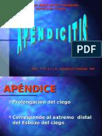 20090514 Apendicitis Aguda Dra Prixila