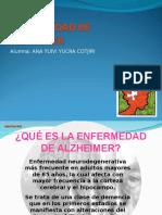Alzheimer ANEX