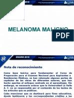 7.- Guia Grafica Mel 20437