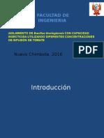 Aislamiento de Bacillus Thuringiensis Con Capacidad Insecticida Utilizando