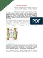 CAVIDADES CORPORALES.docx