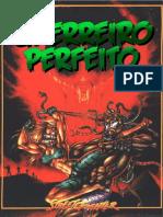 Street Fighter RPG - O Guerreiro Perfeito