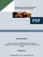 Rol Del Terapeuta y Coterapeuta