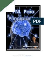 Pnl Para Principiantes Pt1