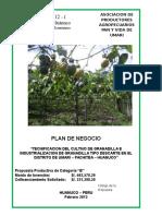 Plan de Negocios Granadilla Umari -Apapvu