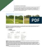 Sistemas de Jardín en movimiento.pdf
