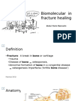 Biomolecular Mechanism in Fracture Healing
