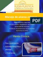 Ulceeras Cronicas