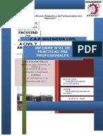 Primer Informe Practicas Preprofesionales-donadone