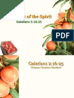 Fruit Spirit