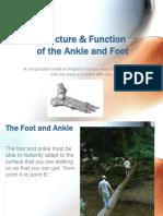Strucfootanklebjb.pdf