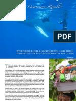 Humpbacks of the Dominican Republic