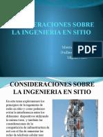 CONSIDERACIONES SOBRE LA INGENIERIA EN SITIO.pptx