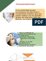 motricidad.pptx