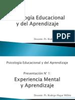 Presentación N° 1.0 P. Experiencia Mental y Aprendizaje