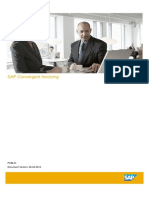 SAP CI.pdf
