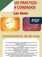 trabajopracticolasaves-111025073620-phpapp01