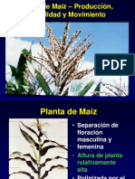 Pollen AislamientoSP