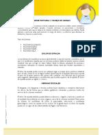 Boletin Informativo PYME - Higiene Postural