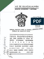 Morales_Nunez_Maria_de_la_Luz g uno.pdf