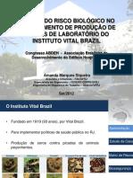 Amanda Marques.pdf