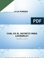 Basado en La Pureza