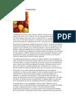 Manzana Usos Medicinales.