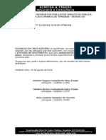 Requerimento - Juntada de Documento Novo - Dudu