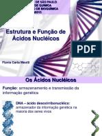 Estrutura_e_Funcao_de_Acidos_Nucleicos.pdf