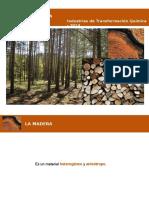Anatomia y Quimica de La Madera 2014