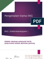 Pengenalan Irama EKG