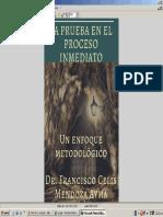 LA PRUEBA EN EL PROCESO INMEDIATO.docx