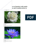 Flower Names in Sanskrit With Audio Pronunciation and Transliteration in English