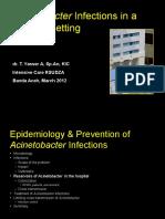 acynetobacter