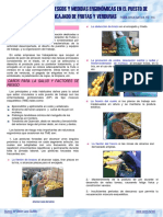 GUIA ENCAJADO DE GRUTAS Y VERDURAS - ERGONOMIA.pdf