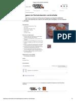 Hogaza en fermentación controlada.pdf