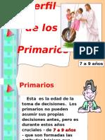 Perfil Primarios.ppt