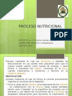 Proceso Nutricional