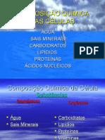 QuimicaCelular excelente     PASSAR ESSE.ppt
