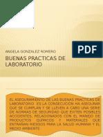BUENAS PRACTICAS DE LABORATORIO.pptx