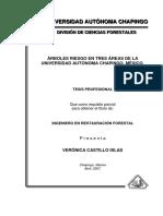 Árboles Riesgo en Tres Áreas de La Universidad Autónoma Chapingo, México